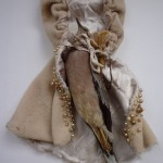 Lorna Crabbe, Cloaked Dove